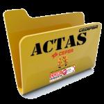 ACTA Nº14 CCSS CEDIPSA